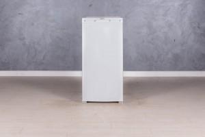 Холодильник бирюса 10с-1